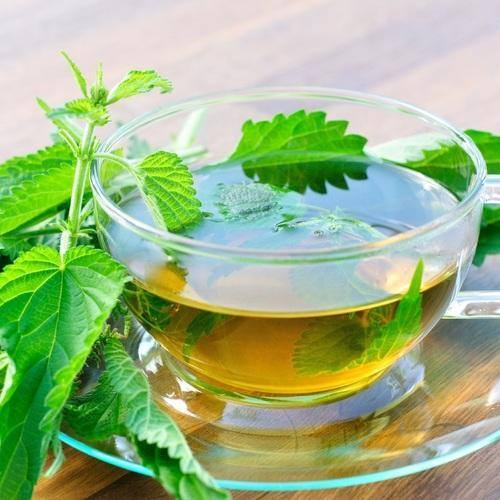 benefits of holy basil tea